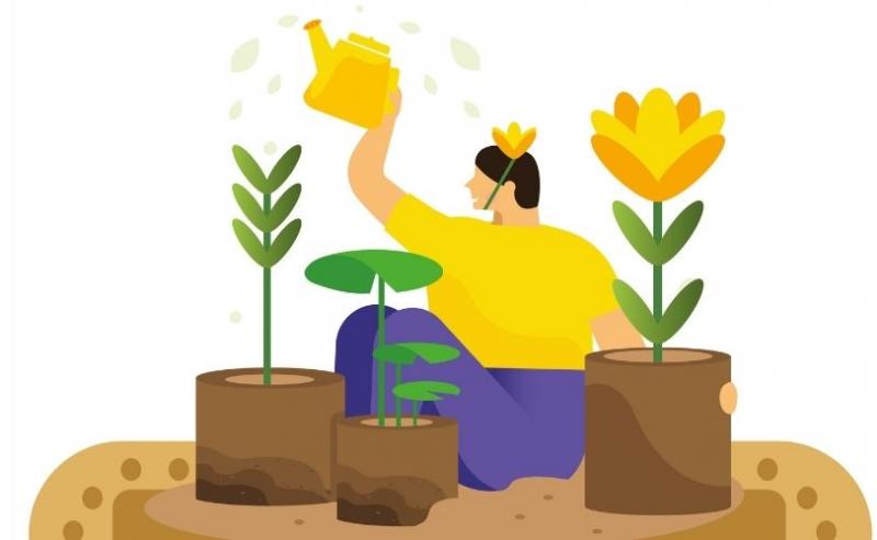 Indoor gardening illustration